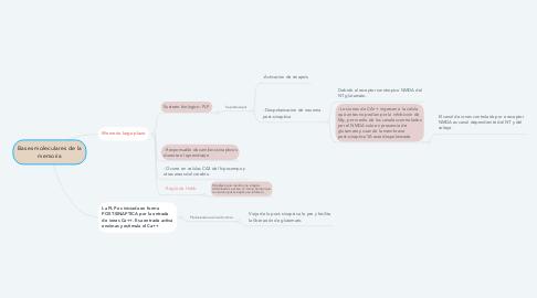Mind Map: Bases moleculares de la memoria