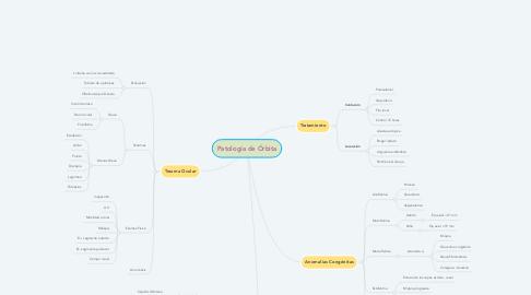 Mind Map: Patología de Órbita