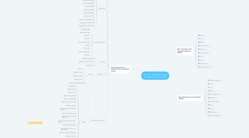 Mind Map: Creación del departamento de auditoría interna (DAI)