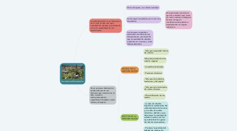 Mind Map: Ecosistemas Deforestados