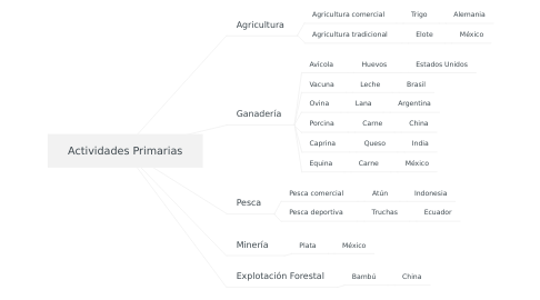 Mind Map: Actividades Primarias