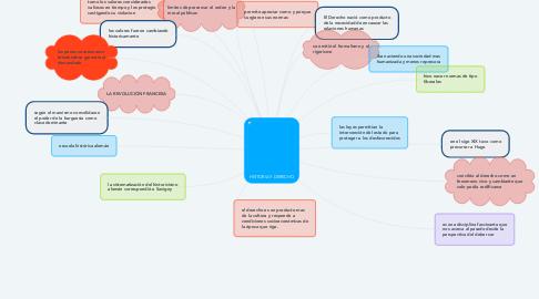 Mind Map: HISTORIA Y DERECHO