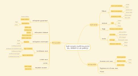 Mind Map: ANATOMOFISIOPATOLOGÍA DEL APARATO URINARIO