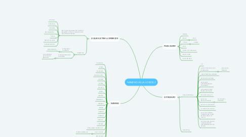 Mind Map: NAMING VILLA LOBOS 2