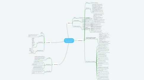 Mind Map: Elementos de la versificacion