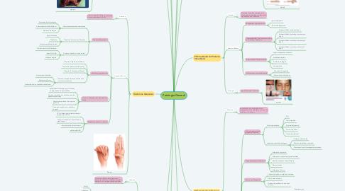 Mind Map: Patología General