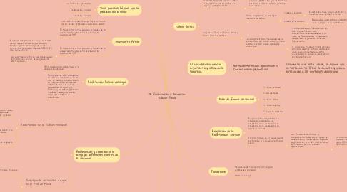 Mind Map: 28. Reabsorción y Secreción Tubular Renal