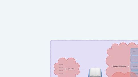 Mind Map: Aparato Digestivo