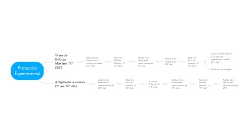Mind Map: Protocolo Experimental