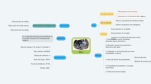 Mind Map: Silicio