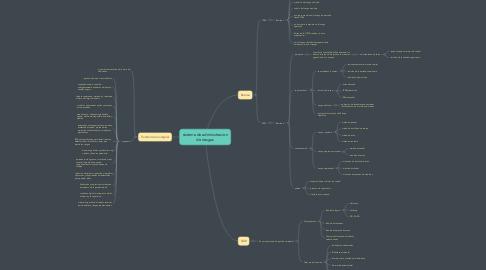 Mind Map: sistema de administracion de riesgos