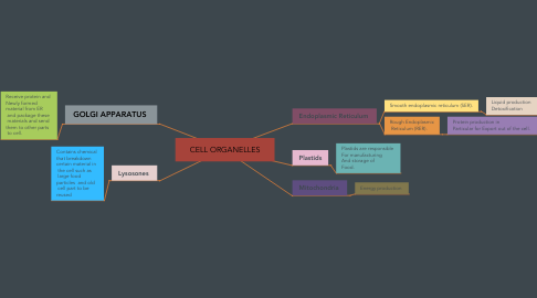 Mind Map: CELL ORGANELLES