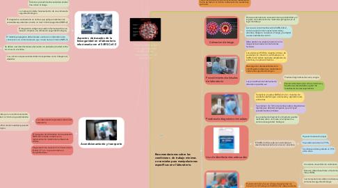 Mind Map: Orientaciones sobre la bioseguridad en el laboratorio  relacionada con la COVID-19