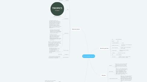 Mind Map: Маникюрный салон