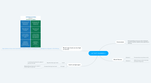 Mind Map: ACTIVITY NUMBER 2