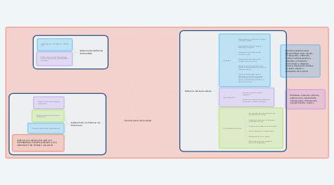 Mind Map: Teoría General del Cuidado