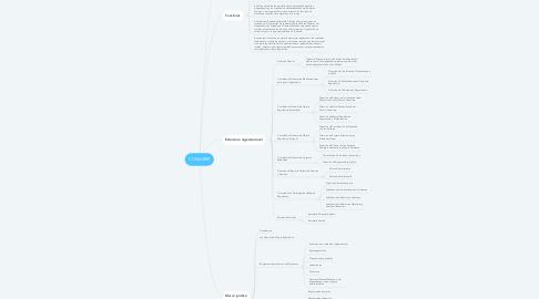 Mind Map: CONAMER