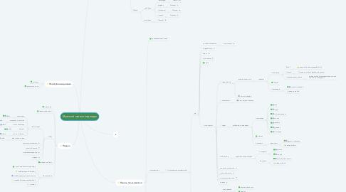 Mind Map: Мужской магазин одежды