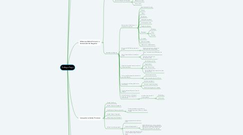Mind Map: Tráfego Pago