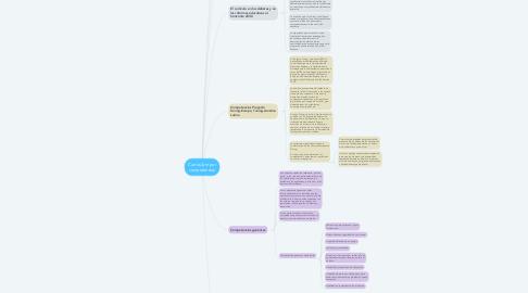 Mind Map: Currículum por competencias