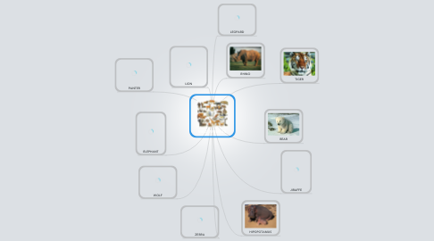 Mind Map: WILD ANIMALS