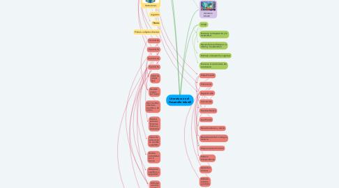 Mind Map: Literatura en el  Desarrollo Infantil