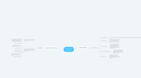 Mind Map: Principios de la Didactica