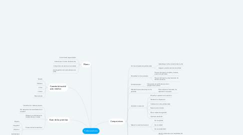 Mind Map: Profesionalismo