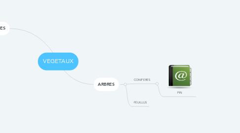 Mind Map: VEGETAUX