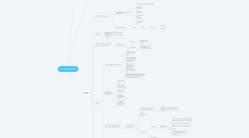 Mind Map: HISTORIA DE VIDA