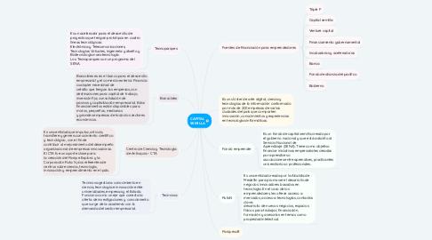 Mind Map: CAPITAL SEMILLA