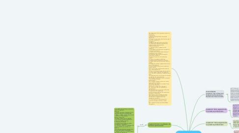 """Mind Map: """"Lineamientos y directrices para la prestación de prácticas profesionales"""""""