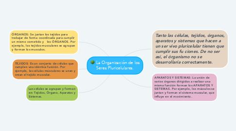 Mind Map: La Organización de los Seres Pluricelulares.