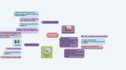 Mind Map: principios básicos metodológico