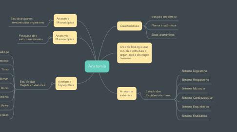 Mind Map: Anatomia