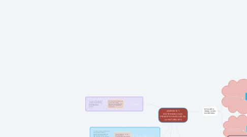 Mind Map: AMBIENTE Y SUSTENTABILIDAD  PRINCIPIOS BÁSICOS DE LA NATURALEZA