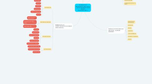 Mind Map: MODELOS DE INTELIGENCIA EMOCIONAL - (JHON ANDERSON FABIO DURAN GUALDRON-2021-1)