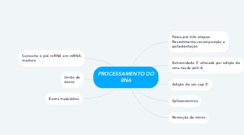 Mind Map: PROCESSAMENTO DO RNA
