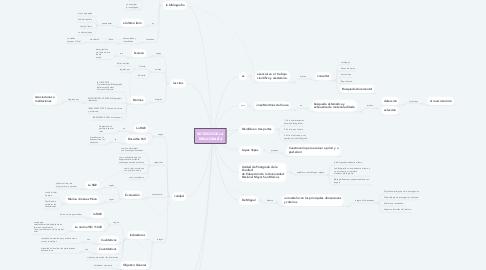 Mind Map: REVISIÓN DE LA BIBLIOGRAFÍA
