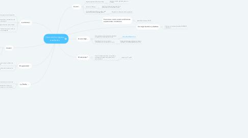 Mind Map: Usos de los signos auxiliares