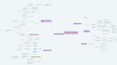 Mind Map: CÉLULAS DEL ORGANISMO