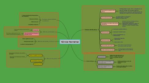 Mind Map: Válvulas Neumaticas
