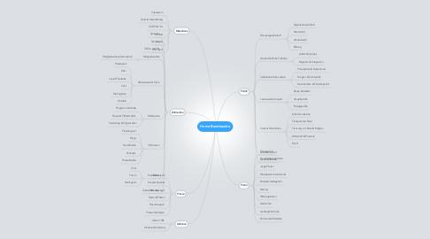 Mind Map: Home Bundesseite