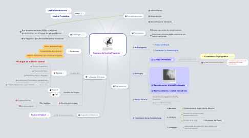 Mind Map: Ruptura de Uretra Posterior