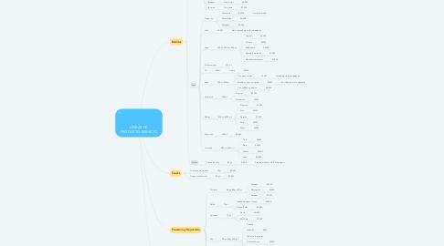 Mind Map: LÍNEAS DE PRODUCTO/SERVICIO