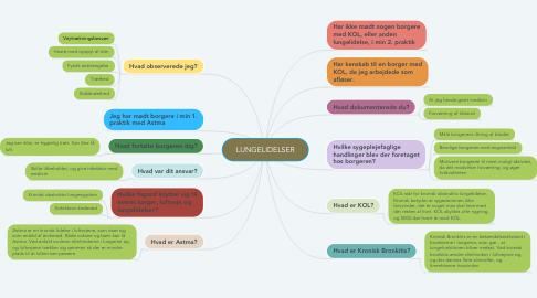 Mind Map: LUNGELIDELSER