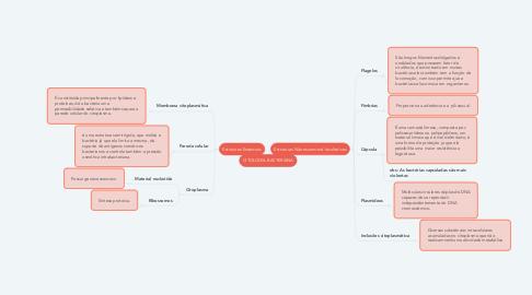 Mind Map: CITOLOGIA BACTERIANA