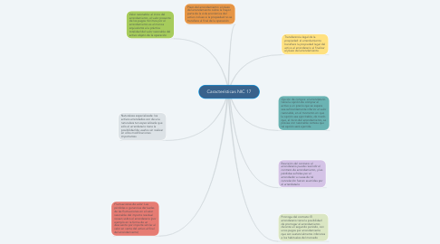 Mind Map: Características NIC 17