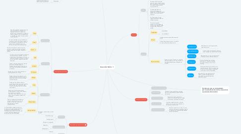 Mind Map: Desarrollo Motriz