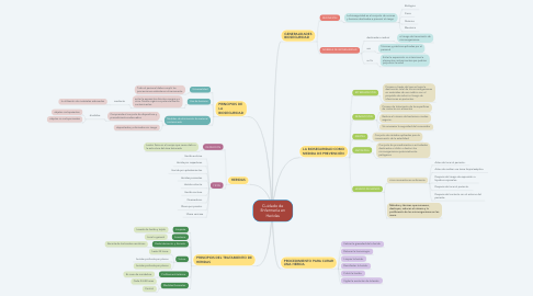 Mind Map: Cuidado de Enfermería en Heridas